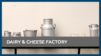preview_dairy_chesse